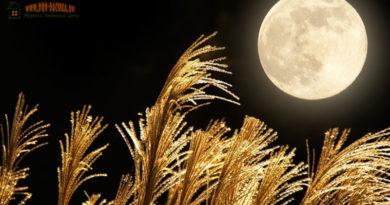 Лунный календарь на март 2017